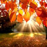 Осень_1