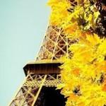 Осень_Париж
